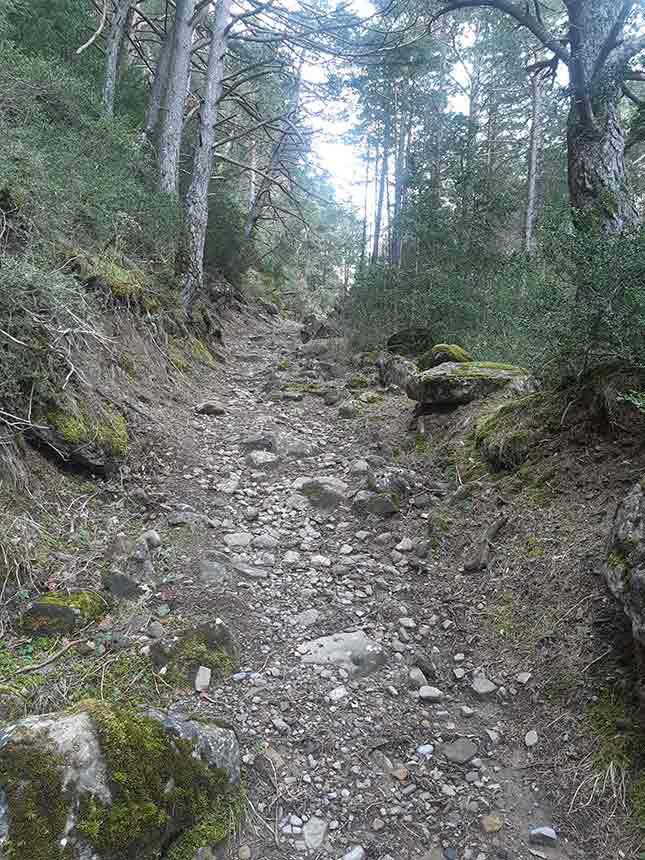 Camino pedregoso y ascendente hacia el Dolmen de Diezcapanas