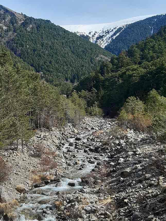 Barranco de Bozuelo camino Fuente del Paco por Pico de la Selva