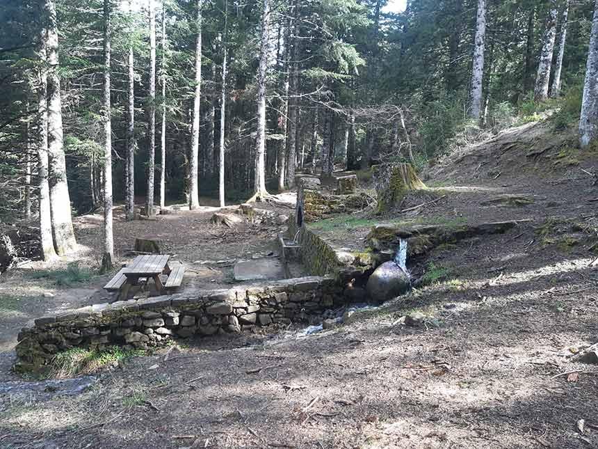 Por Pico de la Selva llegamos al merendero en la Fuente del Paco