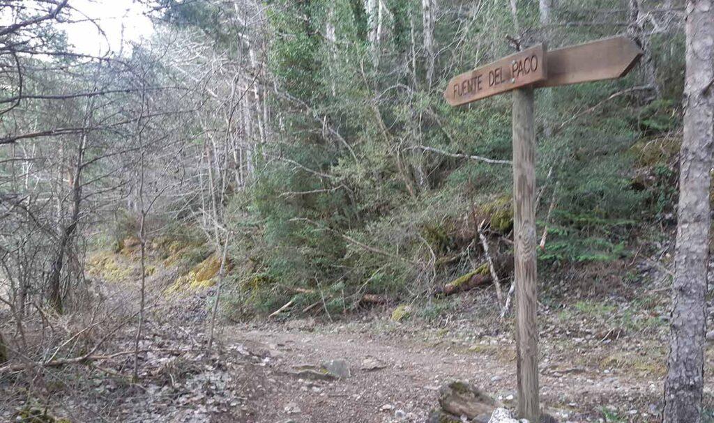 Señalización hacia la Fuente del Paco por Pico de la Selva