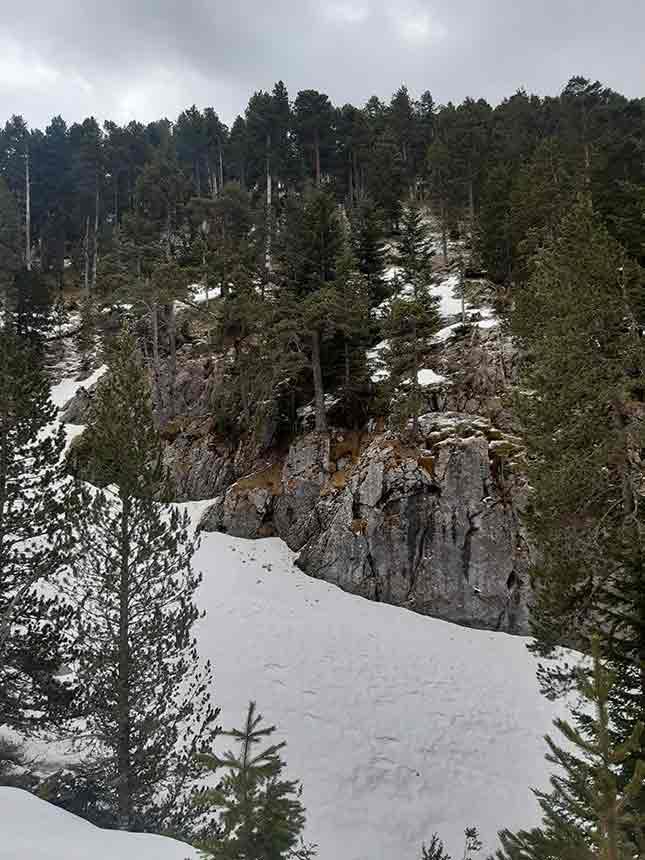 Nieve en invierno en el sendero hacia el Refugio de la Trapa camino Larrosa