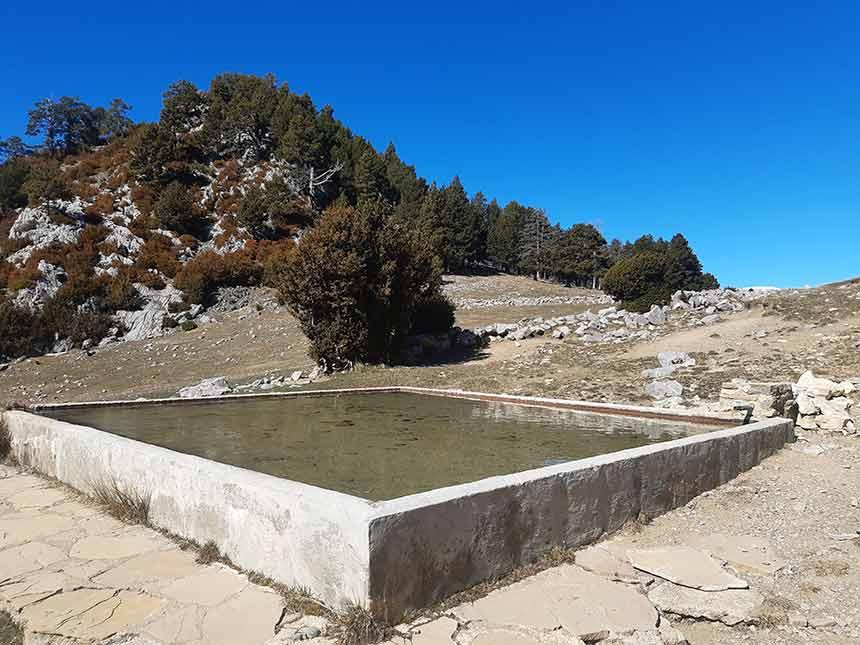 Fuente y estanque con abrevadero en el Refugio de la Trapa camino Larrosa